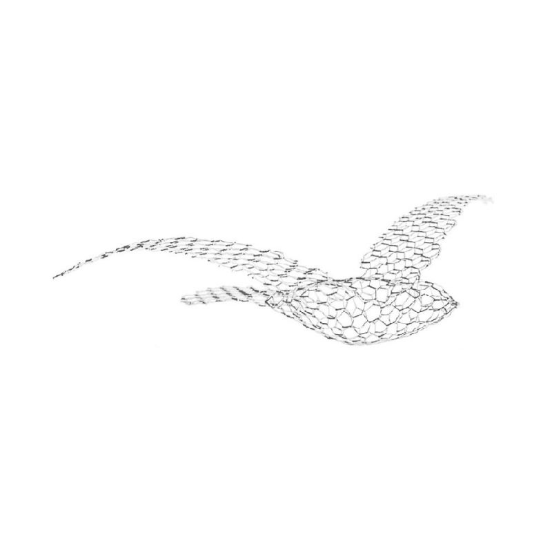 Birds_Large