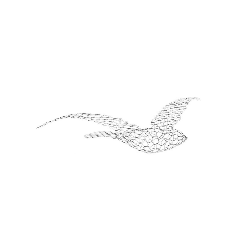 Birds_Small