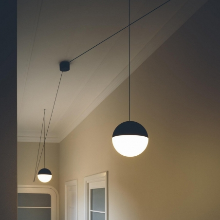 String Light Wallrose